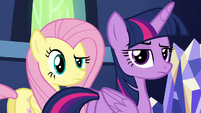 Twilight and Fluttershy aside-glance at Zephyr S6E11