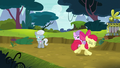 Apple Bloom running away in shame S5E4.png