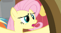 """Fluttershy """"Dragons"""" S02E21.png"""