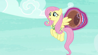 "Fluttershy ""hello there, Mr. Ball"" S6E18"