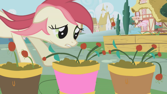 File:Rose Flower Pots S01E04.png