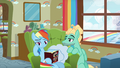 Zephyr Breeze admiring Rainbow Dash S6E11.png