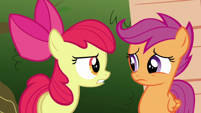 File:Apple Bloom chastising Scootaloo S6E19.png