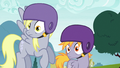 Derpy and Pegasus colt surprised S6E14.png