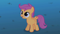 Scootaloo offering help S1E24.png