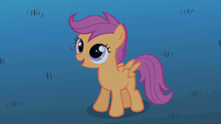 Scootaloo offering help S1E24