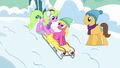 Daisy, Cherry Berry, and Caramel sledding S5E5.png