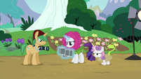 Rarity looking at the photographs S7E6