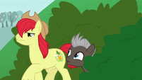 Bright Mac approaches Pear Butter and Grand Pear S7E13
