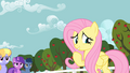 Fluttershy doesn't mind S02E15.png