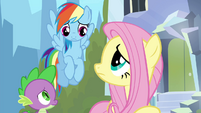 Rainbow and Fluttershy looking at each other S4E25