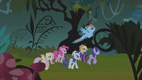 Rainbow flying over Twilight's head S1E02