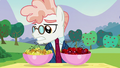 Svengallop looks at yellow cherries S5E24.png