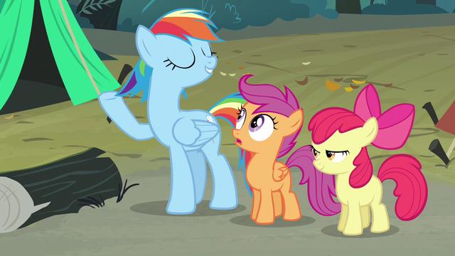 File:Rainbow Dash imitating Rarity S3E6.png