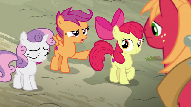 """File:Scootaloo """"we're never gonna do that again"""" S7E8.png"""