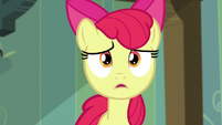 "Apple Bloom ""didn't you hear what I said?"" S5E4"