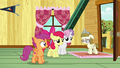 Cutie Mark Crusaders listening to Zipporwhill S7E6.png