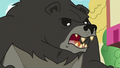 "Bear-Thorax enraged ""yeah!"" S7E15.png"