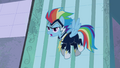 "Rainbow Dash ""just watch us!"" S4E06.png"