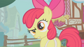 "Apple Bloom ""likely story"" S1E12.png"