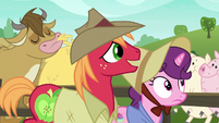 Big Mac and Sugar Belle walk past cow and pigs S7E8