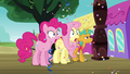 Fluttershy and Pinkie surprised; Snails looks stoic S6E18.png