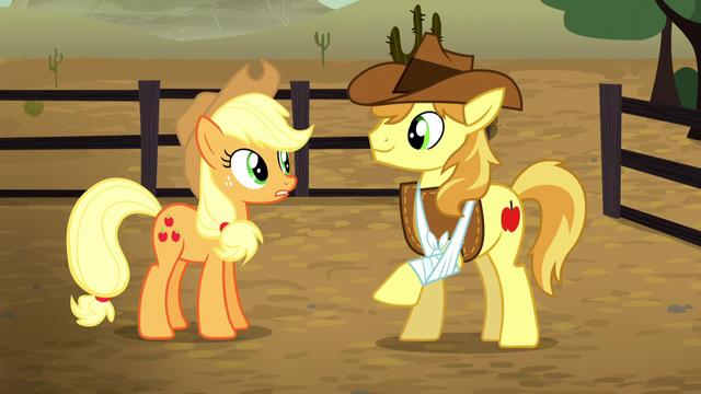 File:Applejack talks to Braeburn S5E6.png