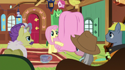 Fluttershy addresses the expert ponies S7E5