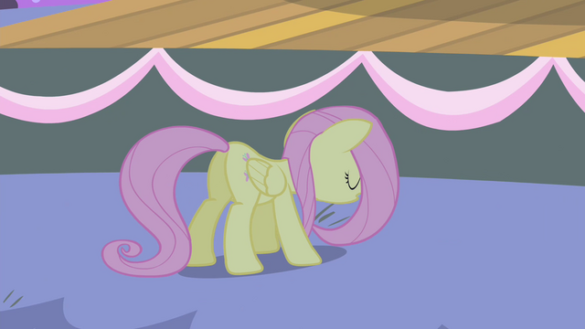 File:Fluttershy stops running S4E14.png