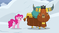 """Pinkie Pie """"avalanches like this"""" S7E11.png"""