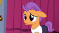 Tender Taps looking worried S6E4.png