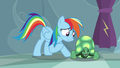 """Rainbow """"Don't you wanna do those things with me?"""" S5E5.png"""