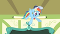 "Rainbow Dash ""I'll never forget it"" S4E05.png"