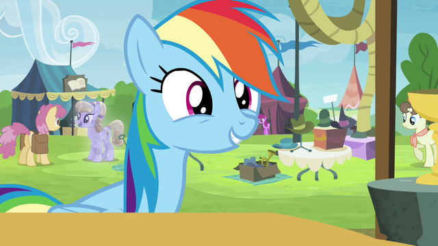 File:Rainbow Dash excited S4E22.png