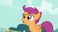 "Scootaloo ""Because it looks like a"" S5E19"