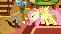 Fluttershy scaring animals S2E19