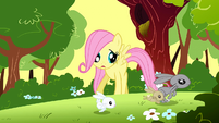 Filly Fluttershy looking at bunnies running away S1E23