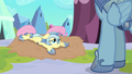 Fluttershy somepony else S3E2.png