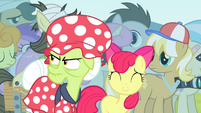 Granny Smith angry at Flim and Flam S4E20