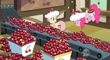 Cherries everywhere in the factory S2E14