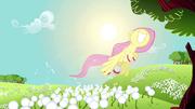 Fluttershy flying past dandelions S2E22.png