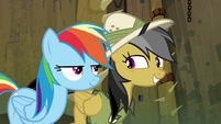 Daring Do sheepish grin S4E04
