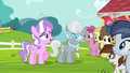 """Diamond Tiara """"I did not wish to disappoint you all"""" S4E15.png"""