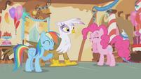 Pinkie and Dash laughing at Gilda S1E05