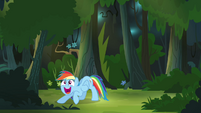 Rainbow Dash being a fangirl S4E04