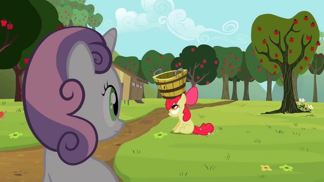 File:Sweetie Belle looking at Apple Bloom S2E05.png