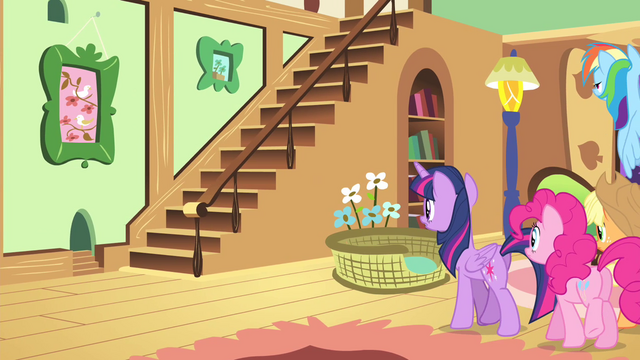 File:Fluttershy's friends walking inside the cottage S4E14.png