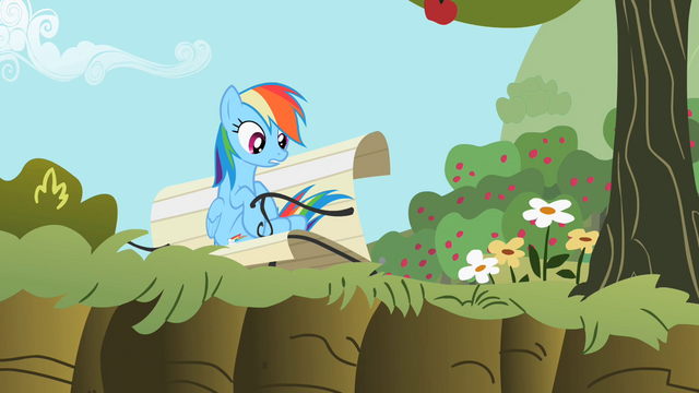 File:Rainbow Dash 'Right, Applejack?' S2E3.png
