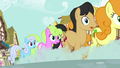 Ponies going to the back of the line S02E19.png