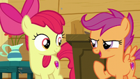"Scootaloo ""we need to go try new stuff"" S6E4"